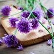 Chives — Stock Photo #27602973