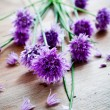 Chives — Stock Photo #27603149