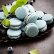 Blueberry macaroons — Stock Photo