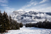 Austrian alps — Stock Photo
