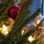 Christmas tree — Stock Photo #6285801