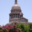 State Capitol Austin, Texas — Stock Photo