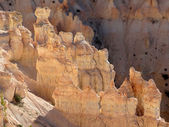 Bryce Canyon Views — Stockfoto