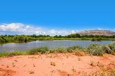 Rio Grande Nature Center State Park — Stock Photo