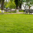 Benches in a Beautiful green park — Stock fotografie
