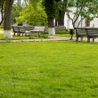 Benches in a Beautiful green park - Stock Photo