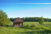 Old rural house with a straw roof — Stock Photo