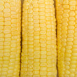 Stock Photo: Corn background