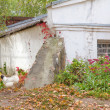Stock Photo: White chicken standing near old house