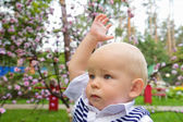 Little boy raising his hand up — Stock Photo