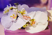 Wedding rings in orchid bouquet — Stock Photo