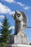 Beautiful angel statue on cemetery — Stock Photo