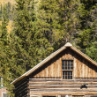 Cabin — Stock Photo #12890254