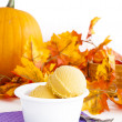 Pumpkin Gelato — Stock Photo #13297969