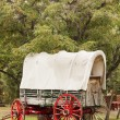 Stock Photo: Old Wagon