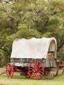 旧的马车 — 图库照片