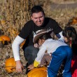 Pumpkin Partch — Stock Photo