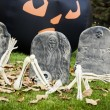 Halloween decorations — Stock Photo
