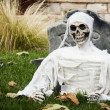 Halloween decorations — Stock Photo #14065733