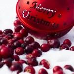 Christmas decoration — Stock Photo #15872277
