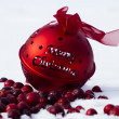 Christmas decoration — Stock Photo #15872305