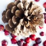 Christmas decoration — Stock Photo #15873511