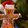 Gingerbread man — Stock Photo #16274645