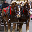 Horse-drawn wagon ride — Stock Photo #16847007
