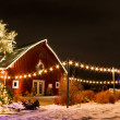 Christmas Lights — Stock Photo #16965445