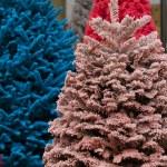 Flocked Christmas Tree — Stock Photo #17460739