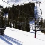 Skiing — Stock Photo #21036353
