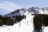 Skiing — Stockfoto