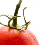 Roma tomatoes — Stock Photo #21265435