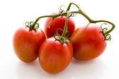 ローマ ・ トマト — ストック写真