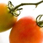 ������, ������: Roma tomatoes