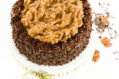 Pastel de chocolate alemán — Foto de Stock