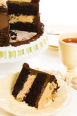Peanut butter mousse cake — Stock Photo