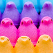 Marshmallow Chicks — Stock Photo