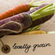 Organic Vegetables - Stockfoto