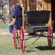 old carriage — Stock Photo #24178085