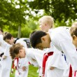 Stock Photo: Tae Kwon Do