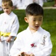tae kwon do — Stock Photo #26614007
