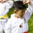 tae kwon do — Stock Photo #26614047