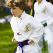 Tae Kwon Do — Photo