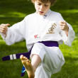 Tae Kwon Do — Foto Stock