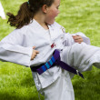 tae kwon do — Stock Photo #26616849