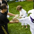 tae kwon do — Stock Photo #26617301