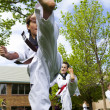 tae kwon do — Stock Photo #26618379