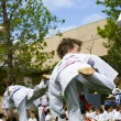 Tae Kwon Do - Stockfoto