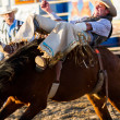 Rodeo — Stock Photo #28181891